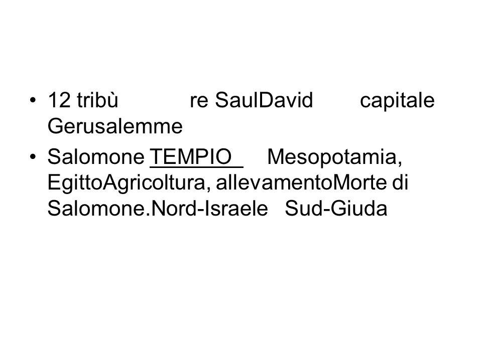 •12 tribù re SaulDavid capitale Gerusalemme •Salomone TEMPIO Mesopotamia, EgittoAgricoltura, allevamentoMorte di Salomone.Nord-Israele Sud-Giuda