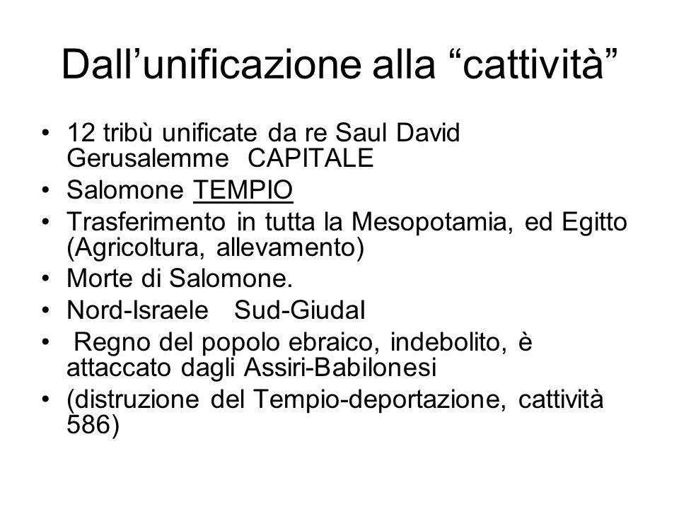 """Dall'unificazione alla """"cattività"""" •12 tribù unificate da re Saul David Gerusalemme CAPITALE •Salomone TEMPIO •Trasferimento in tutta la Mesopotamia,"""