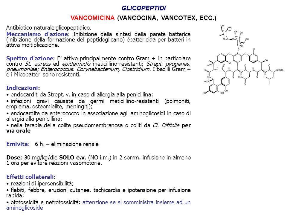 Antibiotico naturale glicopeptidico. Meccanismo d'azione: Inibizione della sintesi della parete batterica (inibizione della formazione del peptidoglic