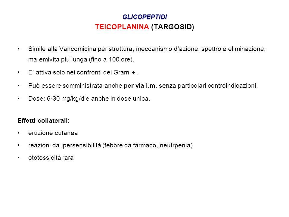 GLICOPEPTIDI TEICOPLANINA (TARGOSID) •Simile alla Vancomicina per struttura, meccanismo d'azione, spettro e eliminazione, ma emivita più lunga (fino a