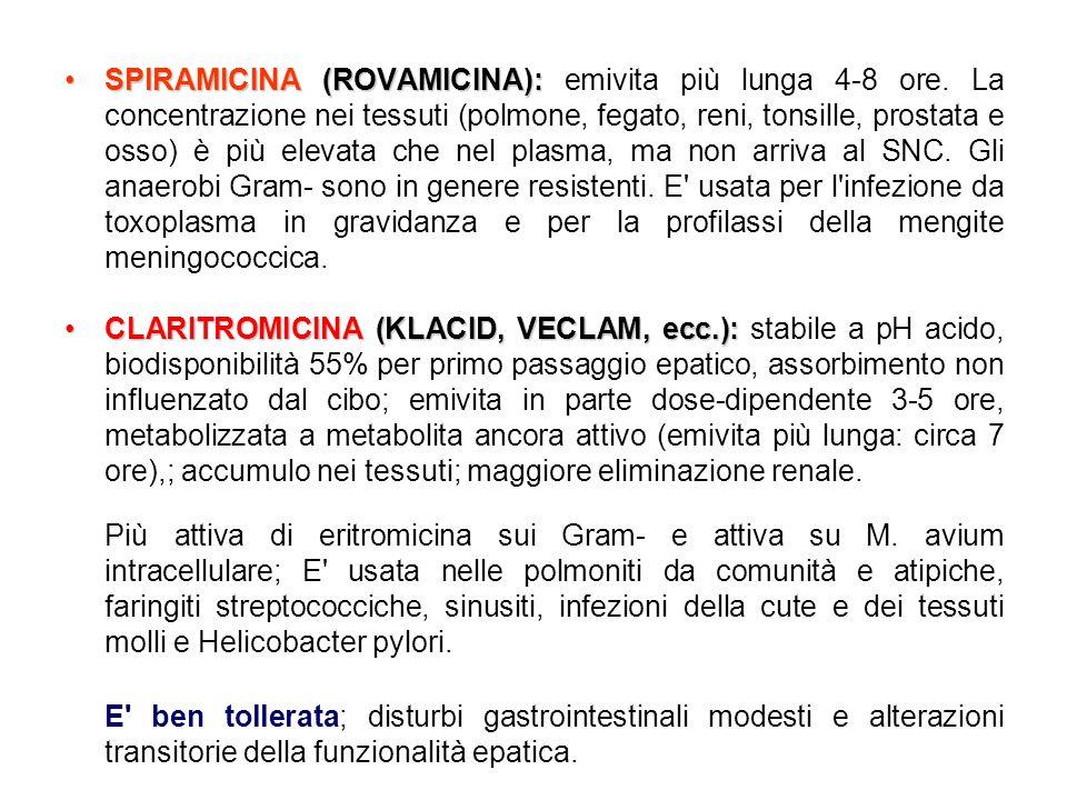•SPlRAMICINA (ROVAMICINA): •SPlRAMICINA (ROVAMICINA): emivita più lunga 4-8 ore. La concentrazione nei tessuti (polmone, fegato, reni, tonsille, prost