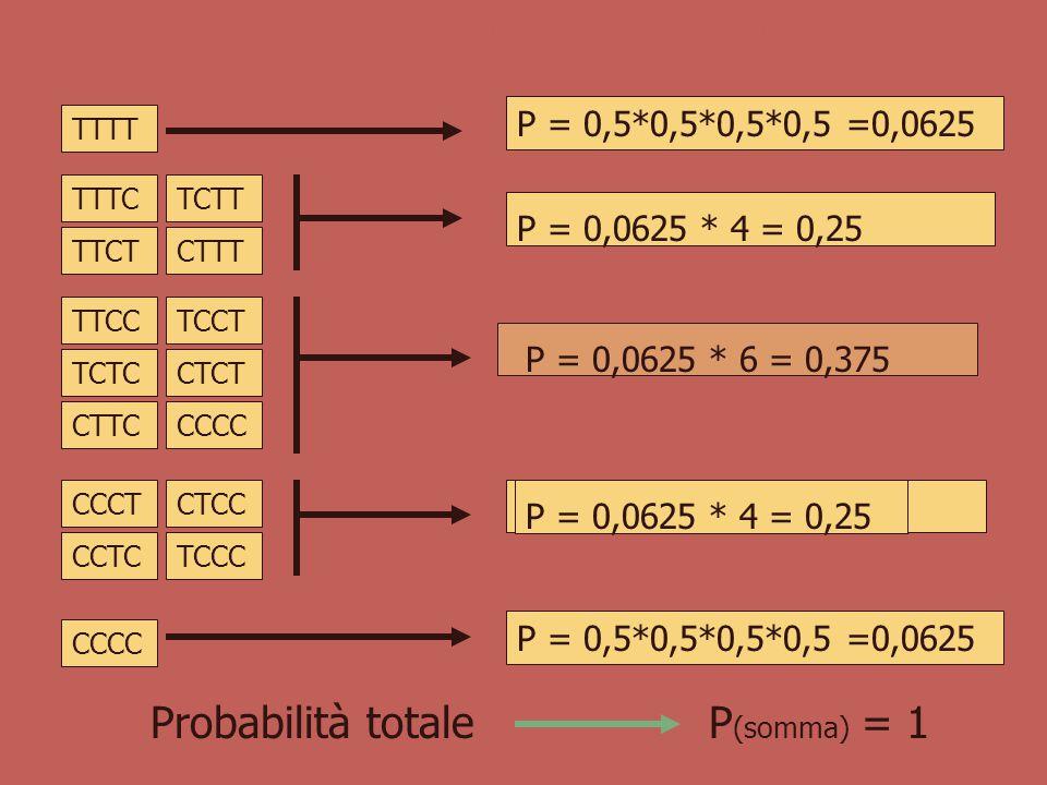 Esempio Probabilità di estrarre da un mazzo un asso di cuori P (A e C) = 4/52 * 13/52 = 1/52 Probabilità di ottenere testa in due lanci successivi P(T