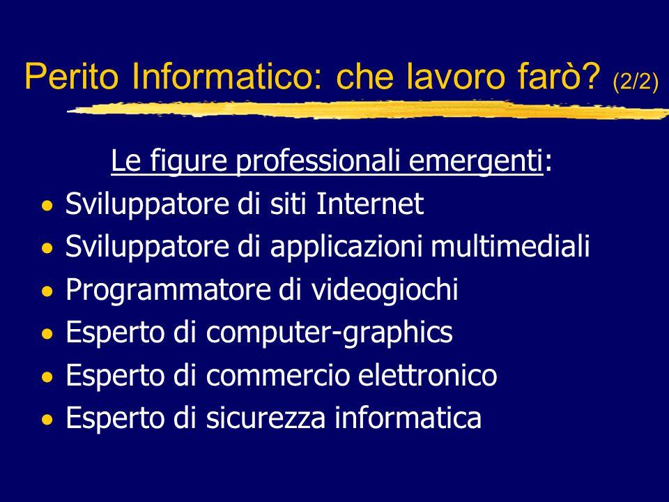 L'occupazione nell'informatica ha futuro.