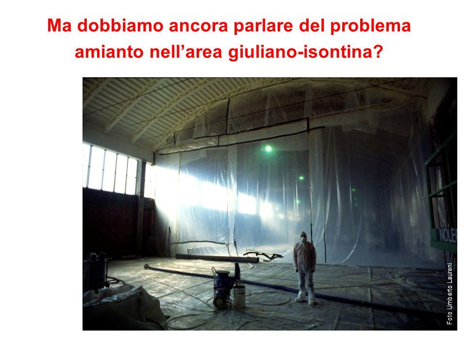 Foto Umberto Laureni Ma dobbiamo ancora parlare del problema amianto nell'area giuliano-isontina?