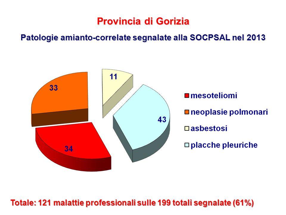 Provincia di Gorizia Patologie amianto-correlate segnalate alla SOCPSAL nel 2013 Totale: 121 malattie professionali sulle 199 totali segnalate (61%)