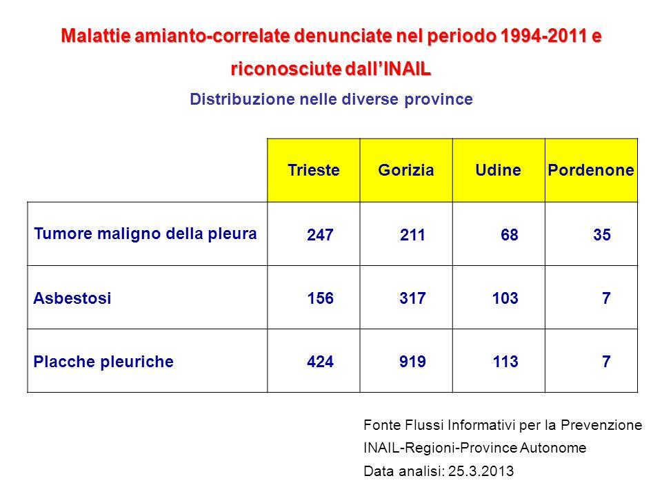 TriesteGoriziaUdinePordenone Tumore maligno della pleura2472116835 Asbestosi 156317103 7 Placche pleuriche 4249191137 Fonte Flussi Informativi per la
