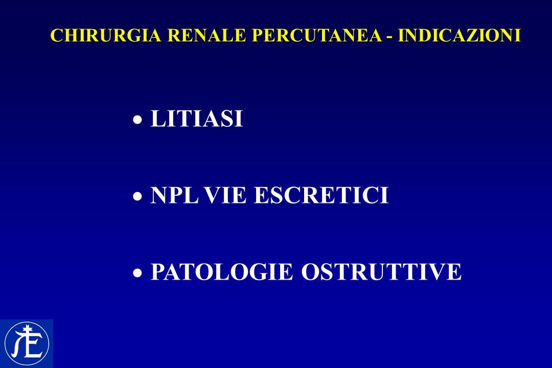  LITIASI  NPL VIE ESCRETICI  PATOLOGIE OSTRUTTIVE CHIRURGIA RENALE PERCUTANEA - INDICAZIONI