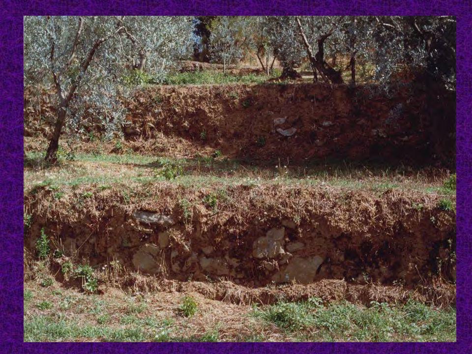 Degrado in pianura ai nostri giorni