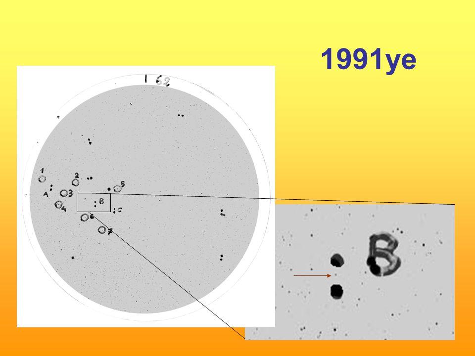 1991ye