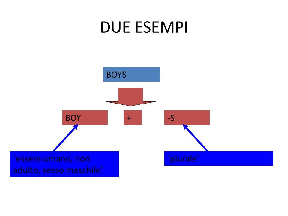 DUE ESEMPI BOYS BOY+-S `essere umano, non adulto, sesso maschile' `plurale'