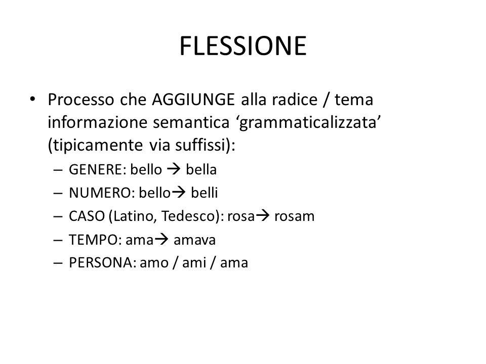 FLESSIONE • Processo che AGGIUNGE alla radice / tema informazione semantica 'grammaticalizzata' (tipicamente via suffissi): – GENERE: bello  bella –