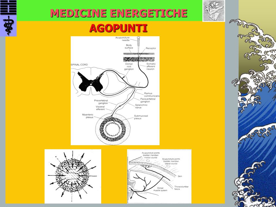 MEDICINE ENERGETICHE AGOPUNTI AGOPUNTI