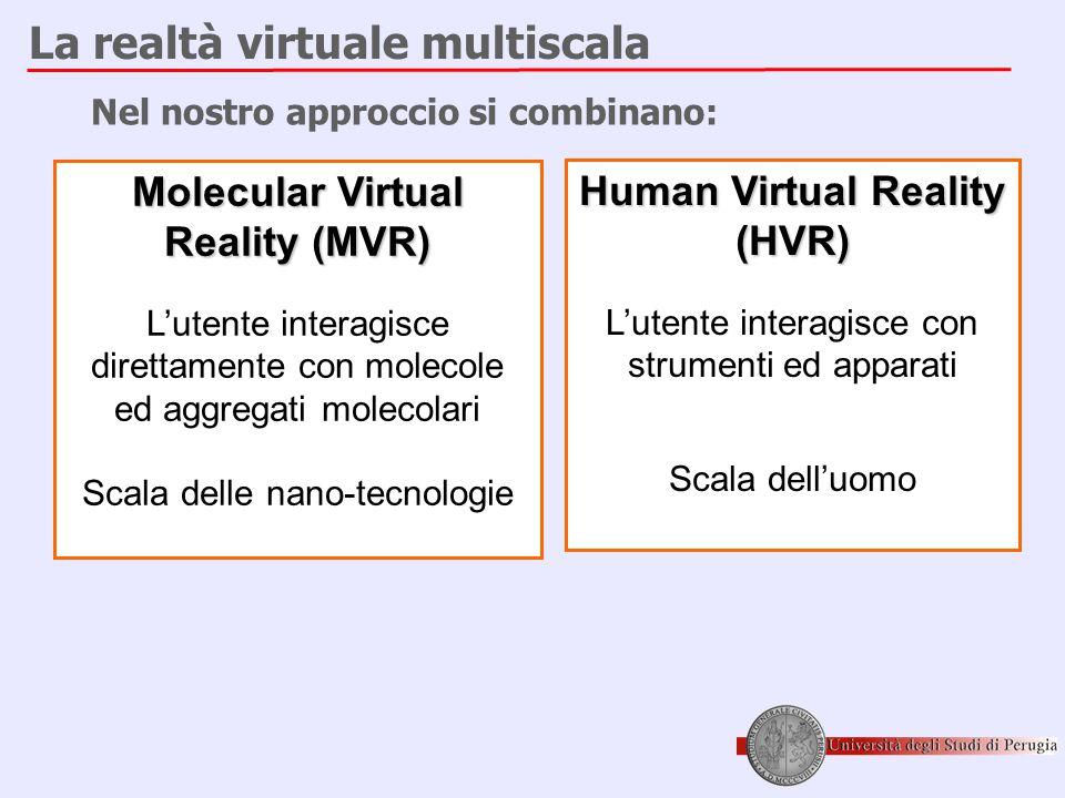 La realtà virtuale multiscala Molecular Virtual Reality (MVR) L'utente interagisce direttamente con molecole ed aggregati molecolari Scala delle nano-tecnologie Human Virtual Reality (HVR) L'utente interagisce con strumenti ed apparati Scala dell'uomo Nel nostro approccio si combinano: