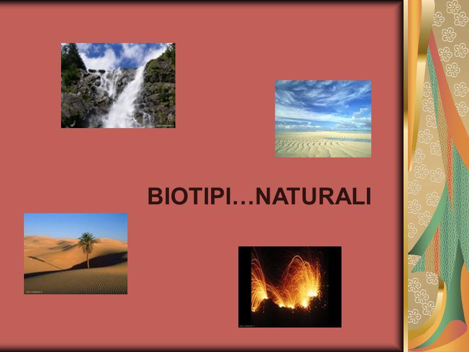 BIOTIPI…NATURALI