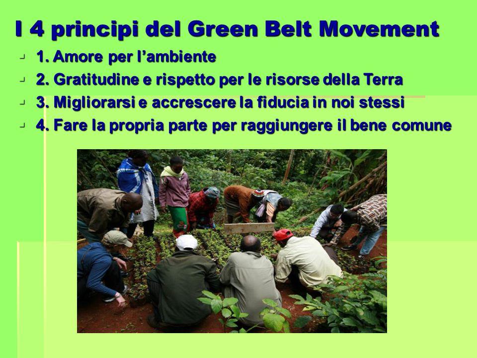 I 4 principi del Green Belt Movement  1. Amore per l'ambiente  2. Gratitudine e rispetto per le risorse della Terra  3. Migliorarsi e accrescere la