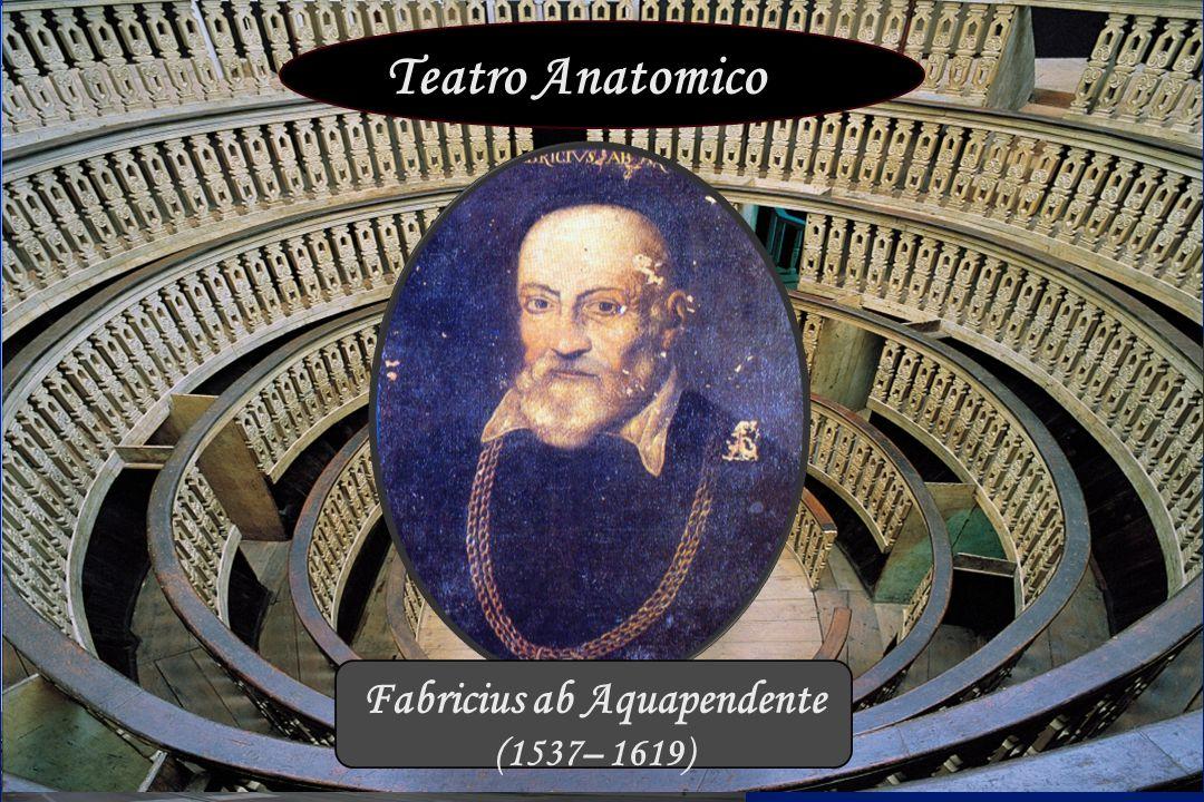 Palazzo Bo Teatro Anatomico Fabricius ab Aquapendente (1537– 1619)