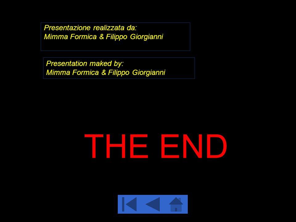 Presentazione realizzata da: Mimma Formica & Filippo Giorgianni Presentation maked by: Mimma Formica & Filippo Giorgianni THE END