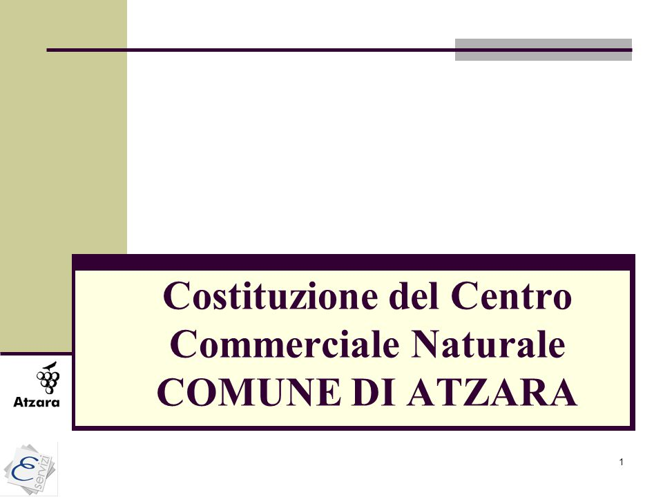 1 Costituzione del Centro Commerciale Naturale COMUNE DI ATZARA