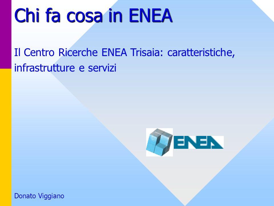 Chi fa cosa in ENEA Il Centro Ricerche ENEA Trisaia: caratteristiche, infrastrutture e servizi Donato Viggiano