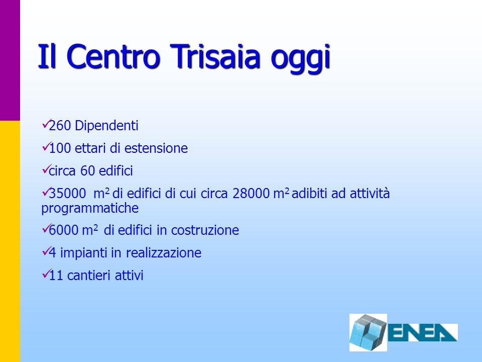 Il Centro Trisaia oggi 260 Dipendenti 100 ettari di estensione circa 60 edifici 35000 m 2 di edifici di cui circa 28000 m 2 adibiti ad attività programmatiche 6000 m 2 di edifici in costruzione 4 impianti in realizzazione 11 cantieri attivi