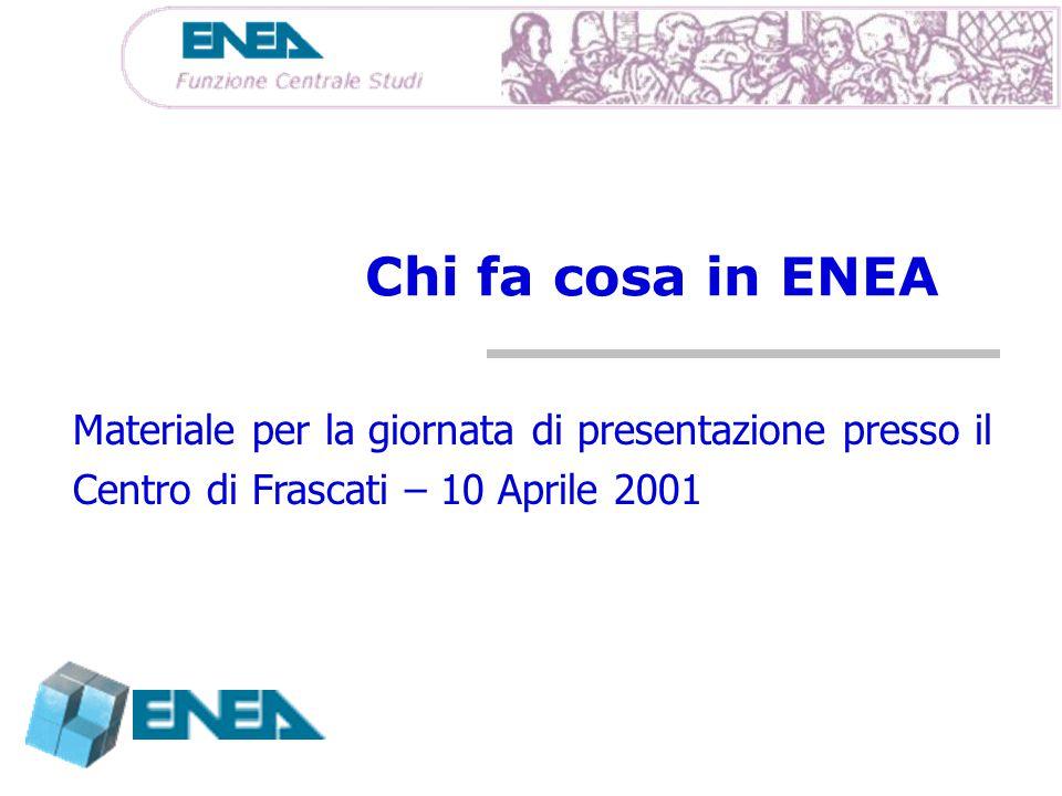 Chi fa cosa in ENEA Materiale per la giornata di presentazione presso il Centro di Frascati – 10 Aprile 2001