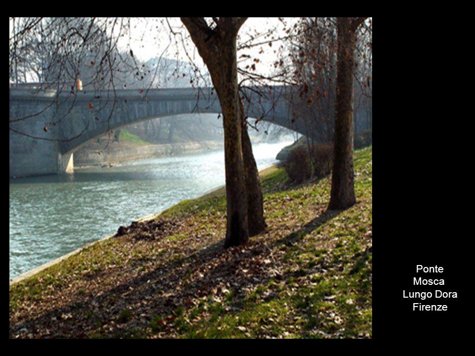 Ponte Mosca Lungo Dora Firenze
