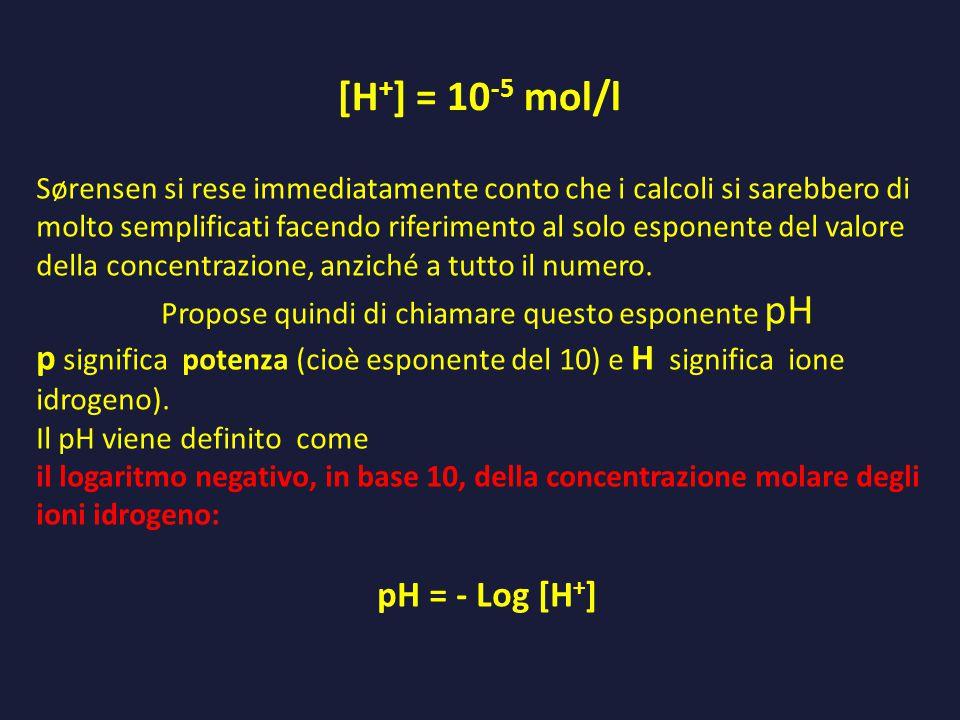 [H + ] = 10 -5 mol/l Sørensen si rese immediatamente conto che i calcoli si sarebbero di molto semplificati facendo riferimento al solo esponente del valore della concentrazione, anziché a tutto il numero.