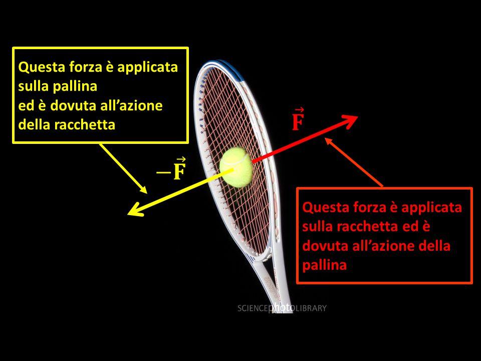 Questa forza è applicata sulla racchetta ed è dovuta all'azione della pallina Questa forza è applicata sulla pallina ed è dovuta all'azione della racchetta
