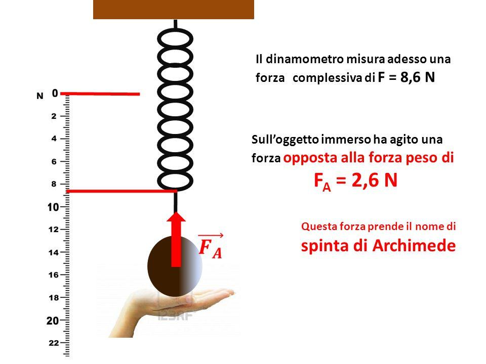 Il dinamometro misura adesso una forza complessiva di F = 8,6 N Sull'oggetto immerso ha agito una forza opposta alla forza peso di F A = 2,6 N Questa