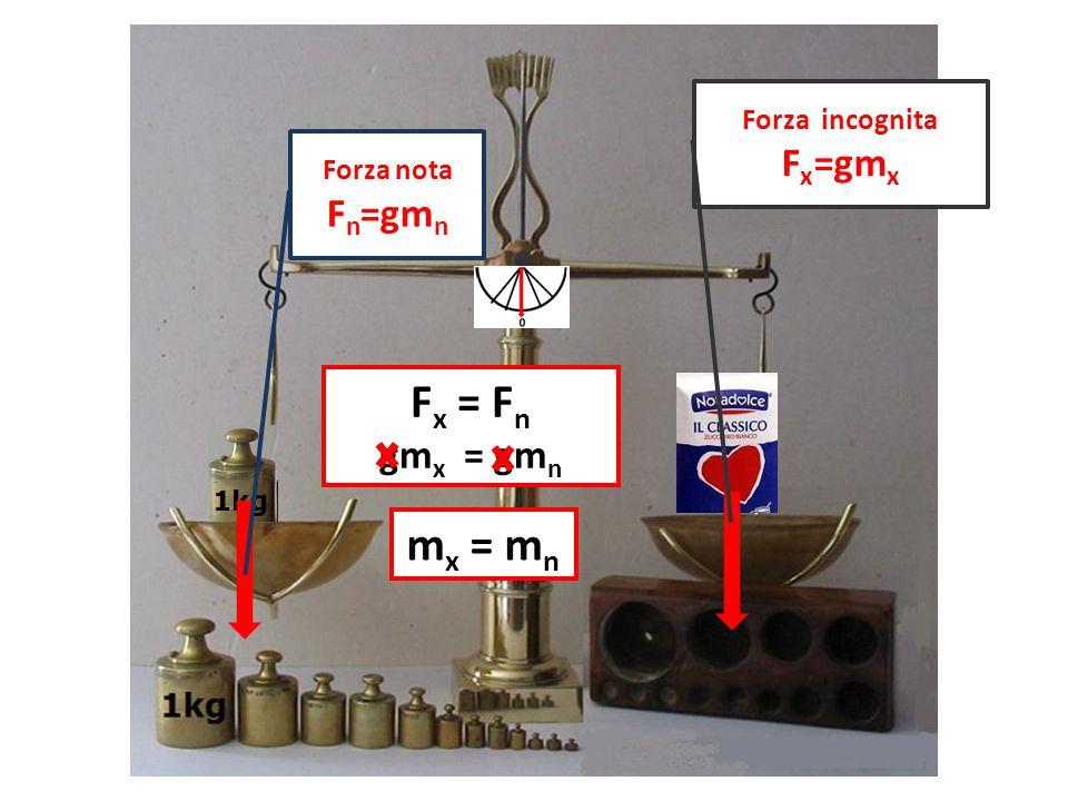 Forza nota F n =gm n Forza incognita F x =gm x F x = F n gm x = gm n m x = m n