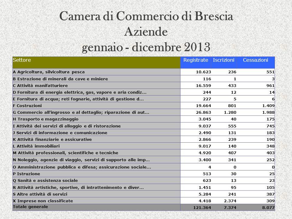 Camera di Commercio di Brescia Aziende gennaio - dicembre 2013 SettoreRegistrateIscrizioniCessazioni A Agricoltura, silvicoltura pesca10.623236551 B E