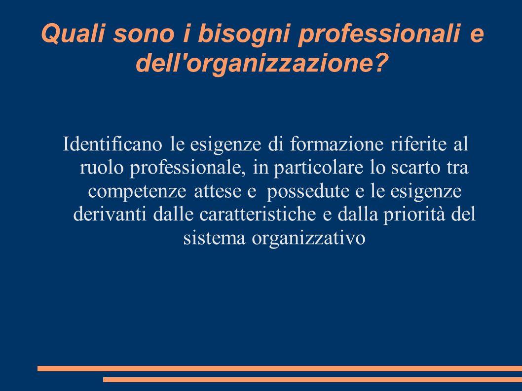 Quali sono i bisogni professionali e dell'organizzazione? Identificano le esigenze di formazione riferite al ruolo professionale, in particolare lo sc
