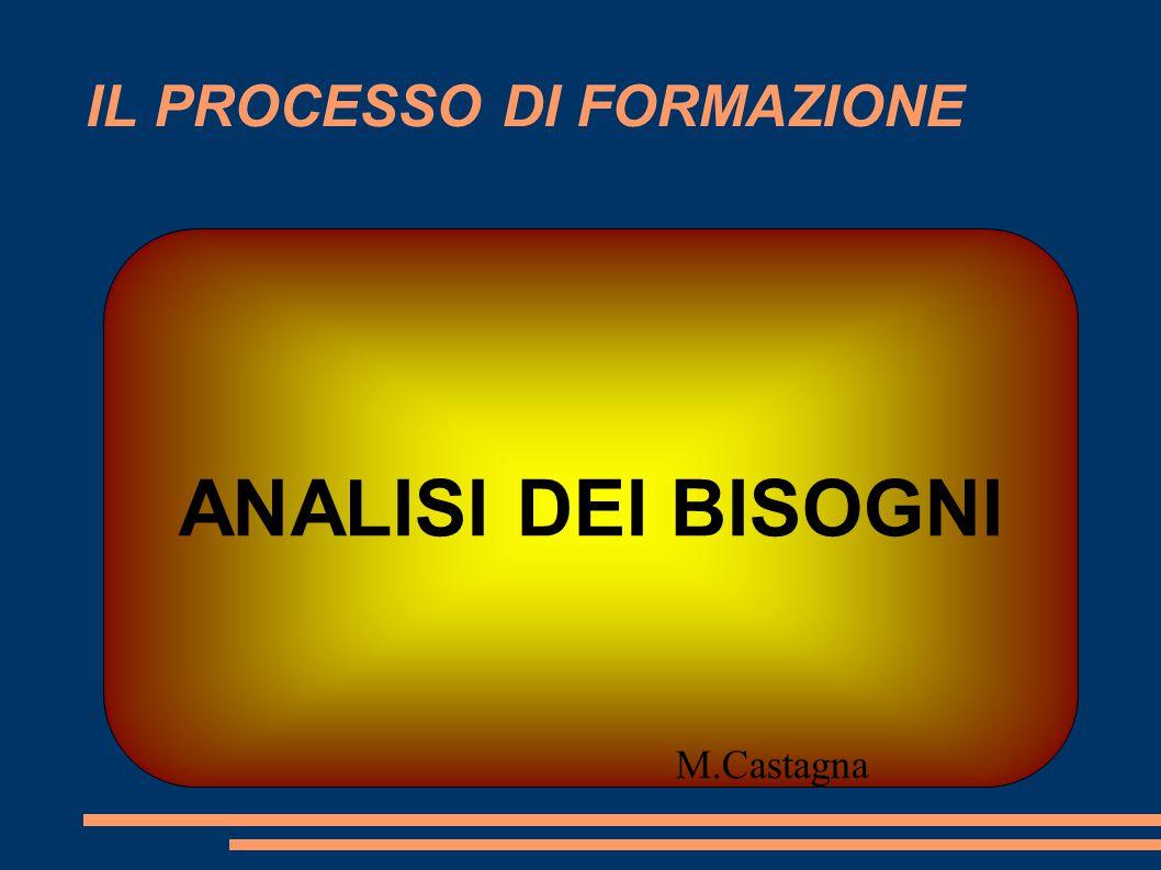 IL PROCESSO DI FORMAZIONE ANALISI DEI BISOGNI M.Castagna