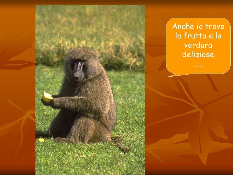 Anche io trovo la frutta e la verdura deliziose ……