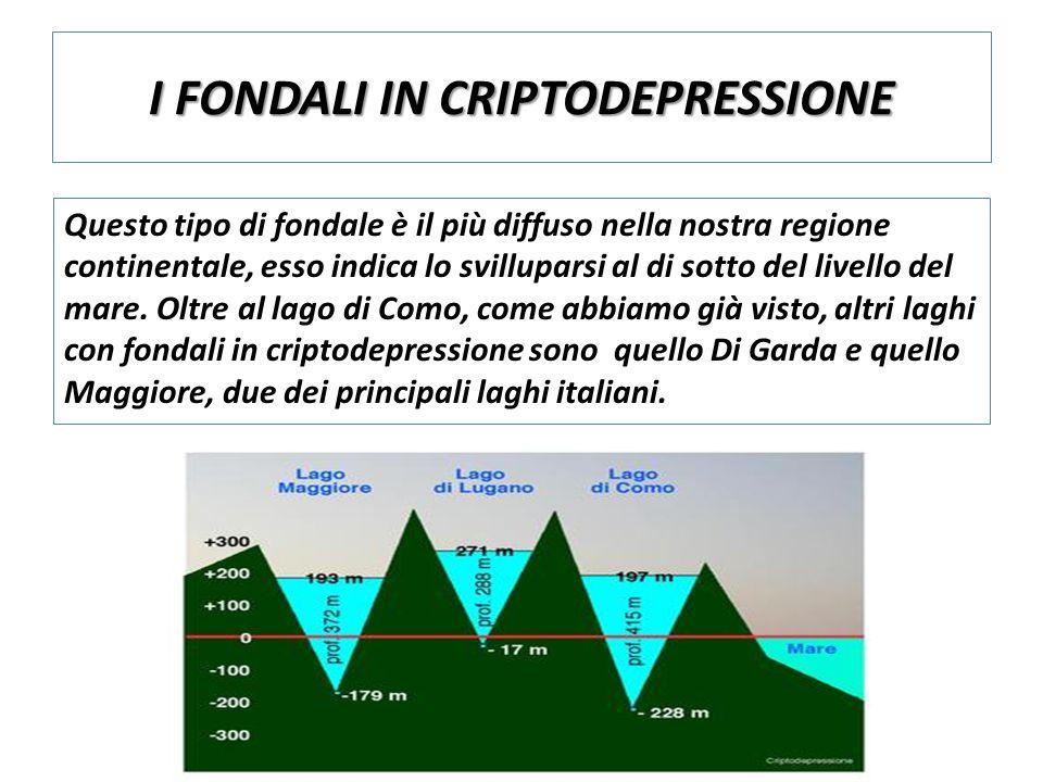 I FONDALI IN CRIPTODEPRESSIONE Questo tipo di fondale è il più diffuso nella nostra regione continentale, esso indica lo svilluparsi al di sotto del livello del mare.