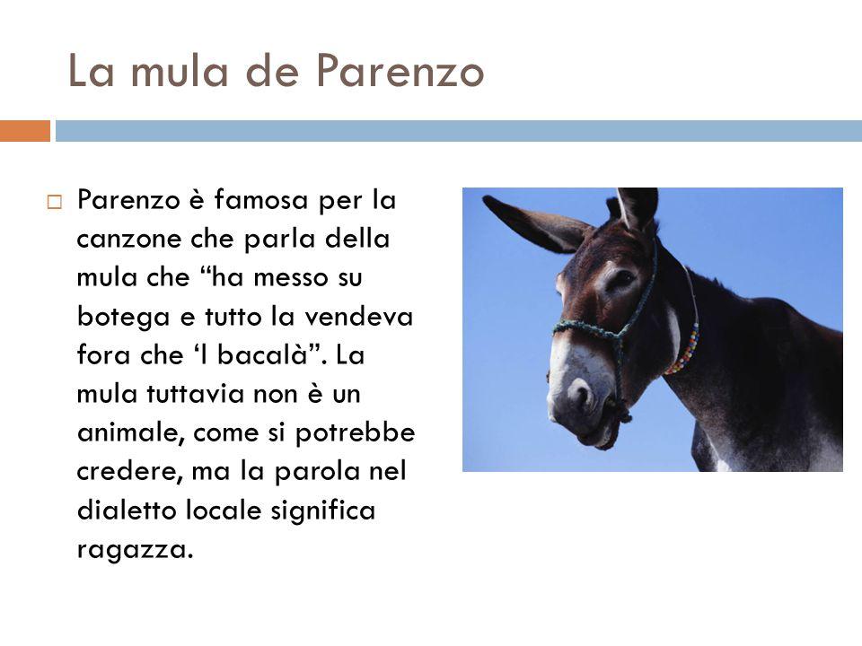 """La mula de Parenzo  Parenzo è famosa per la canzone che parla della mula che """"ha messo su botega e tutto la vendeva fora che 'l bacalà"""". La mula tutt"""