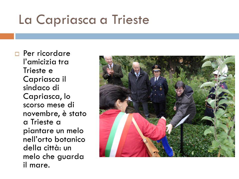 La Capriasca a Trieste  Per ricordare l'amicizia tra Trieste e Capriasca il sindaco di Capriasca, lo scorso mese di novembre, è stato a Trieste a pia