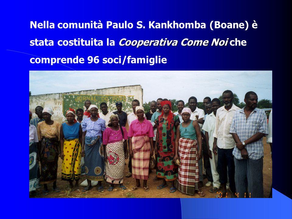 Nella comunità Paulo S. Kankhomba (Boane) è Cooperativa Come Noi stata costituita la Cooperativa Come Noi che comprende 96 soci/famiglie