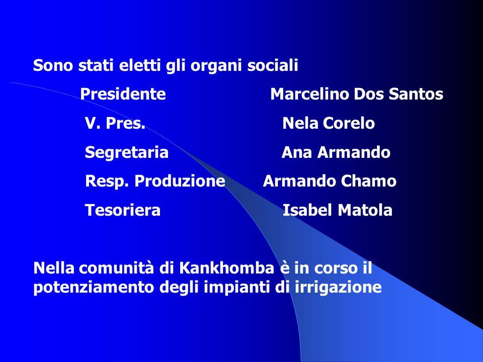 Sono stati eletti gli organi sociali Presidente Marcelino Dos Santos V. Pres. Nela Corelo Segretaria Ana Armando Resp. Produzione Armando Chamo Tesori