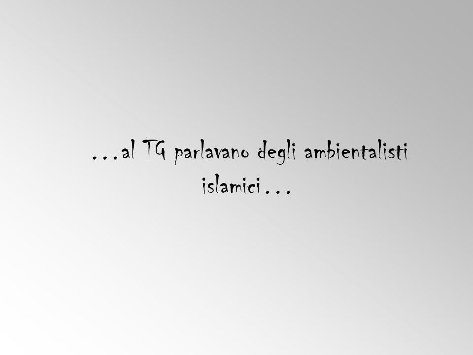 …al TG parlavano degli ambientalisti islamici…