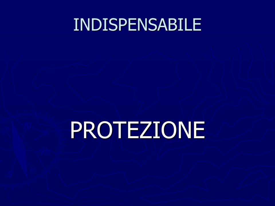 INDISPENSABILE PROTEZIONE