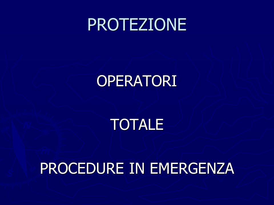 PROTEZIONE AFFIDATIPRIVACY NECESSITA' DI INFORMAZIONI