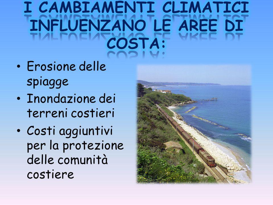 Erosione delle spiagge Inondazione dei terreni costieri Costi aggiuntivi per la protezione delle comunità costiere