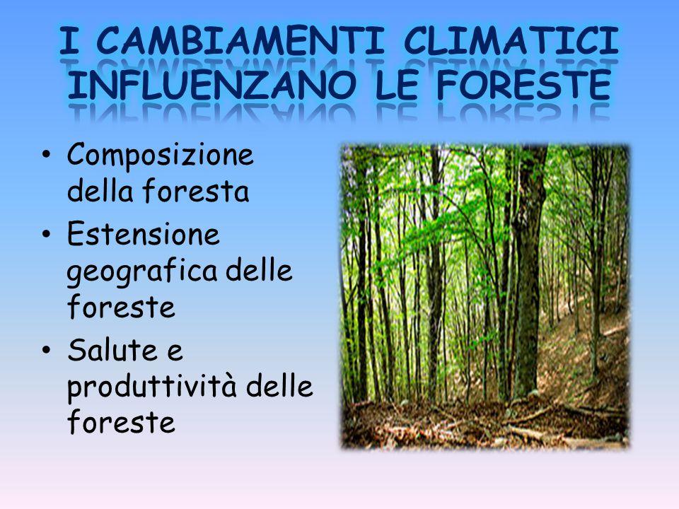 Composizione della foresta Estensione geografica delle foreste Salute e produttività delle foreste