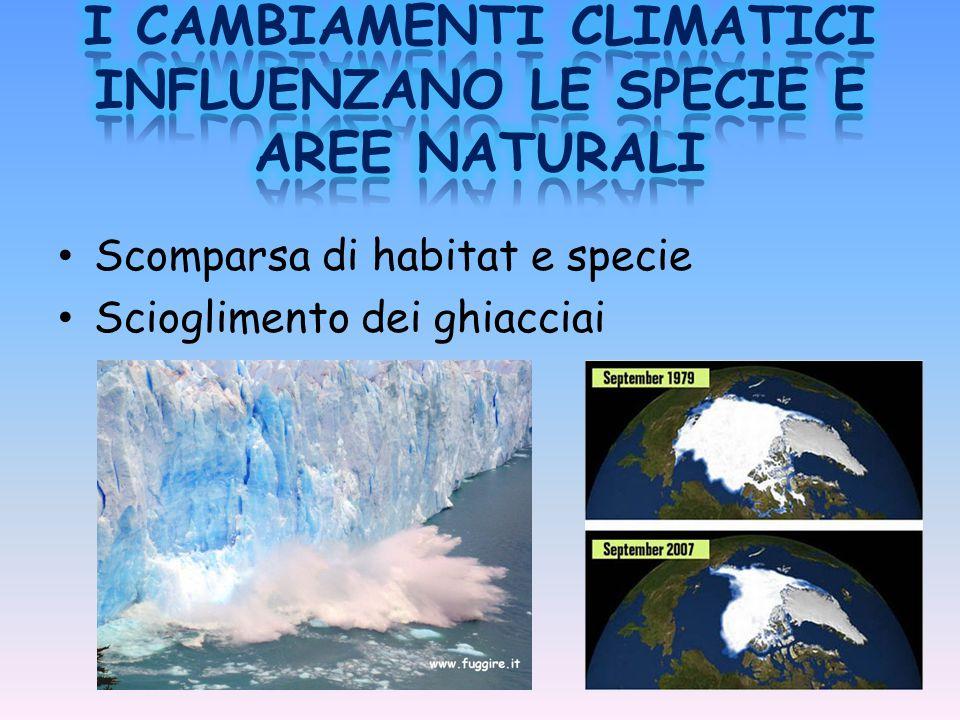 Scomparsa di habitat e specie Scioglimento dei ghiacciai