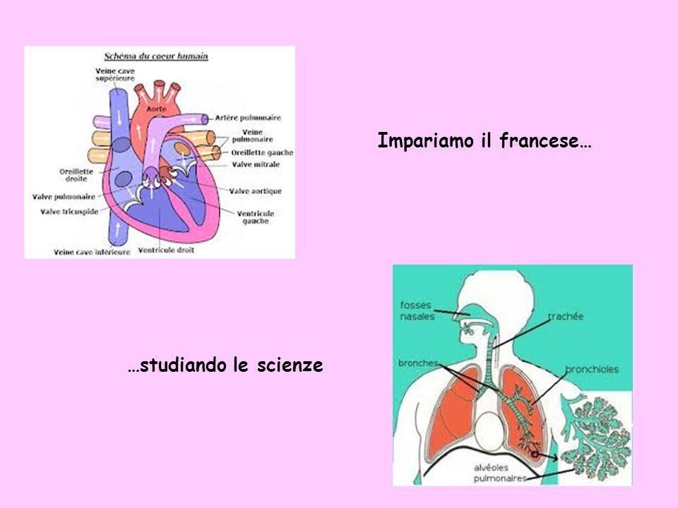 Impariamo il francese… …studiando le scienze