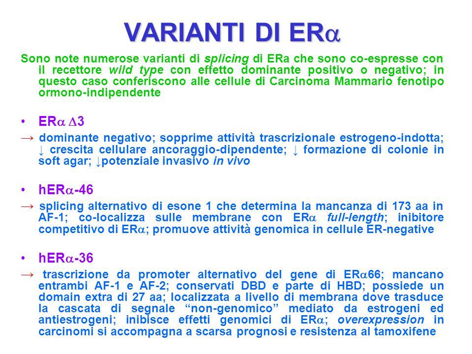VARIANTI DI ER  Sono note numerose varianti di splicing di ERa che sono co-espresse con il recettore wild type con effetto dominante positivo o negat