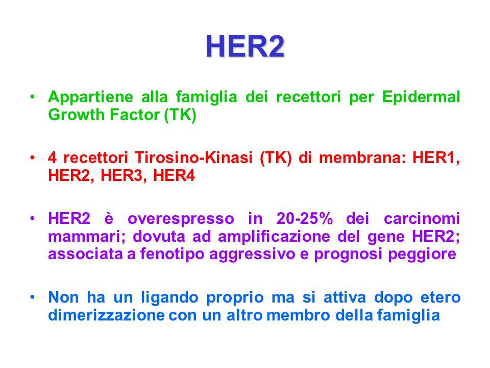 HER2 Appartiene alla famiglia dei recettori per Epidermal Growth Factor (TK) 4 recettori Tirosino-Kinasi (TK) di membrana: HER1, HER2, HER3, HER4 HER2