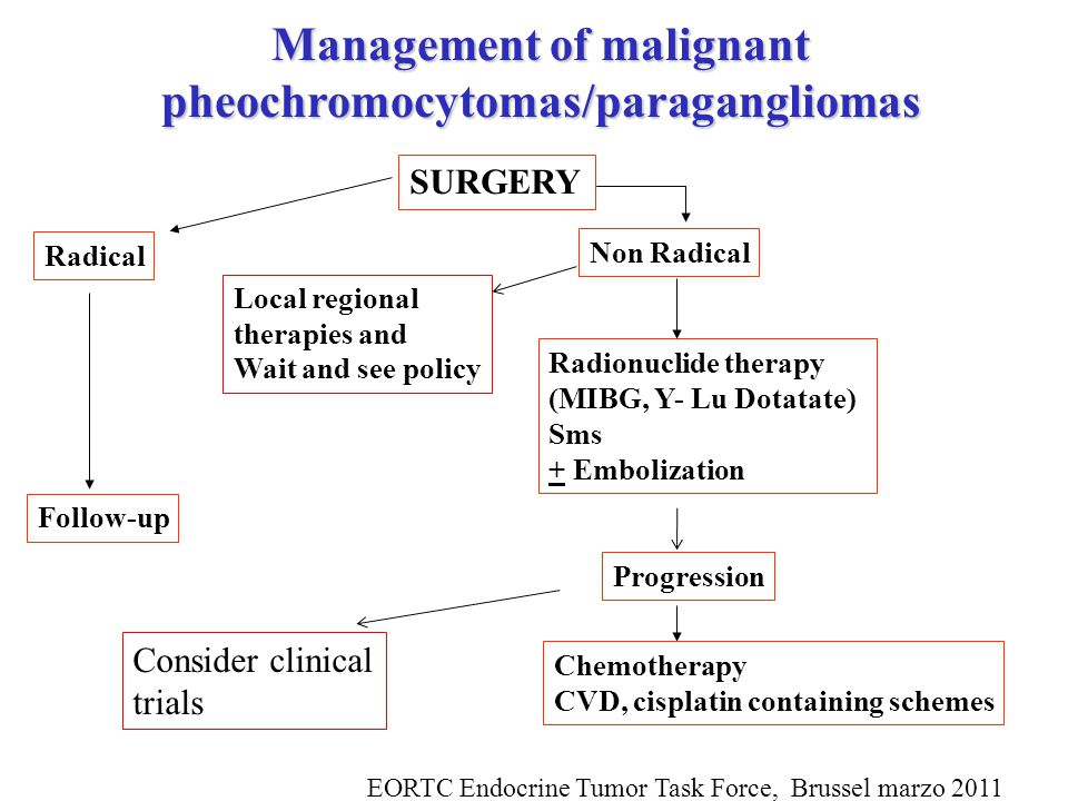 Management of malignant pheochromocytomas/paragangliomas SURGERY Radical Non Radical Radionuclide therapy (MIBG, Y- Lu Dotatate) Sms + Embolization Progression Follow-up Chemotherapy CVD, cisplatin containing schemes Consider clinical trials Local regional therapies and Wait and see policy EORTC Endocrine Tumor Task Force, Brussel marzo 2011