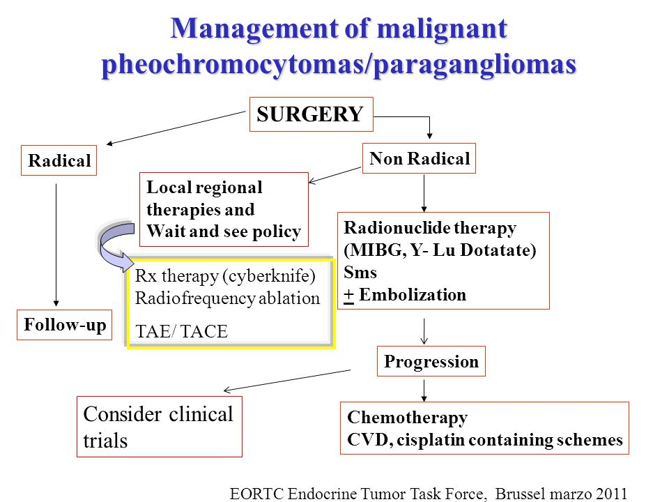 Management of malignant pheochromocytomas/paragangliomas SURGERY Radical Non Radical Radionuclide therapy (MIBG, Y- Lu Dotatate) Sms + Embolization Progression Follow-up Chemotherapy CVD, cisplatin containing schemes Consider clinical trials Local regional therapies and Wait and see policy EORTC Endocrine Tumor Task Force, Brussel marzo 2011 Rx therapy (cyberknife) Radiofrequency ablation TAE/ TACE